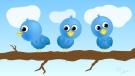 twitfriends